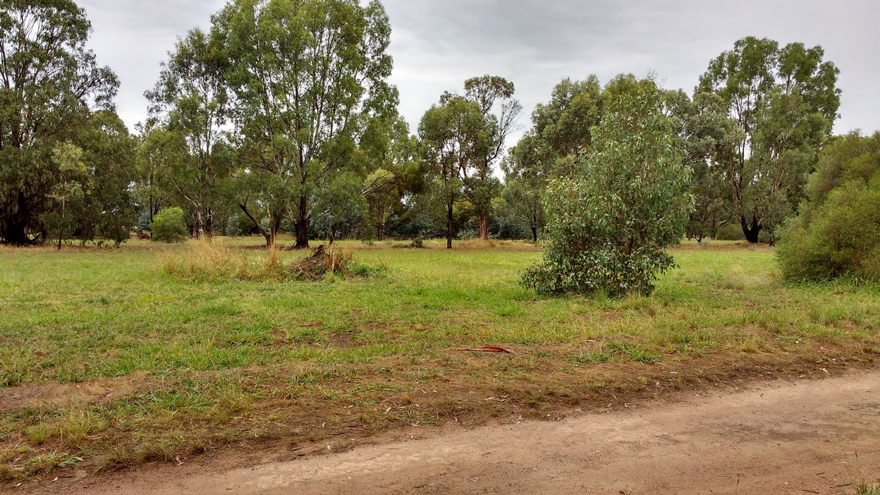 2 Shadforth Reserve track reduced