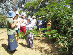 Group members learn all there is to know about berries at Bee Haven. Click image