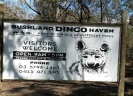 Dingo Haven sign cropped